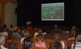 Alimentación y hábitos saludables en Nuava Acrópolis Alicante
