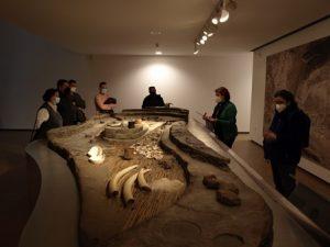 Museo Arqueologico Almeria Acropolis Millares